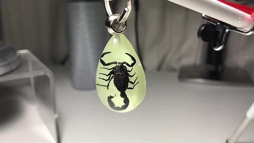 昆虫キーホルダー